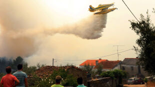 Udało się ugasić pożary w Portugalii. Spłonęło kilka tysięcy hektarów