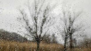 Pogoda na jutro: ciepło, wietrznie, deszczowo