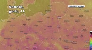 Temperatura w kolejnych dniach (Ventusky.com)
